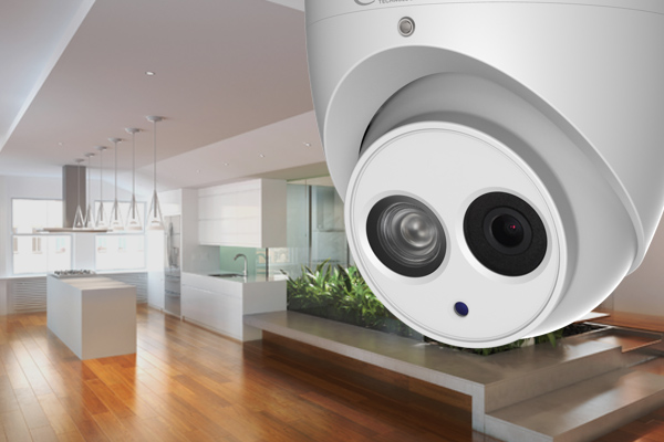 Cameras and Security by tecport